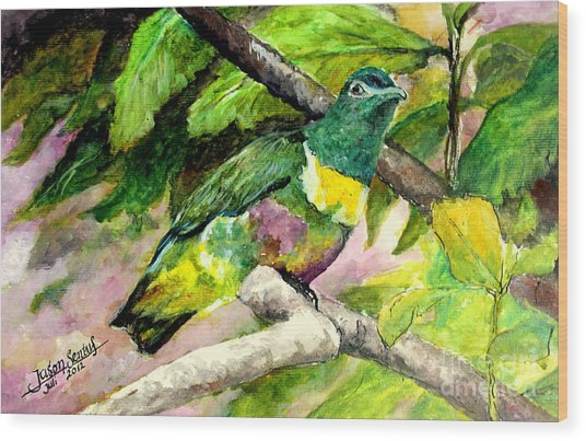 White-bibbed Fruit Dove  Wood Print