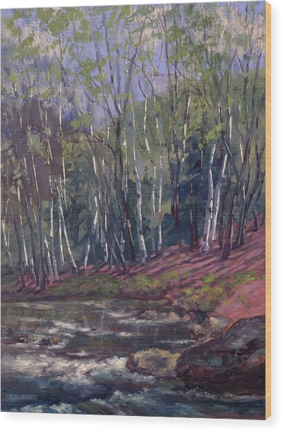 White Birches On Otter Brook Wood Print