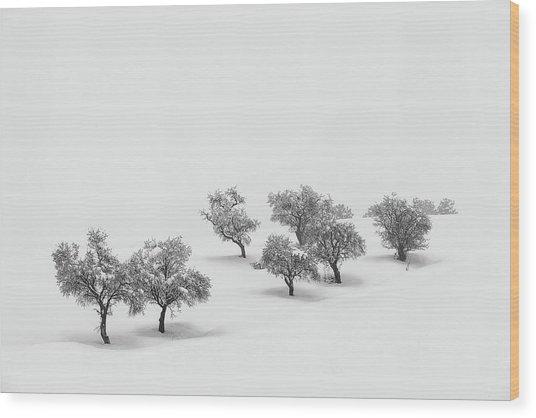 White Carpet Wood Print