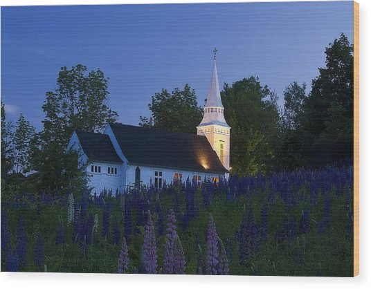 White Church At Dusk In A Field Of Lupines Wood Print