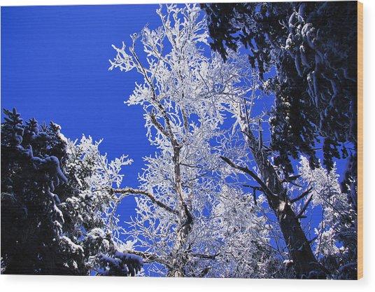White Crystal Wood Print