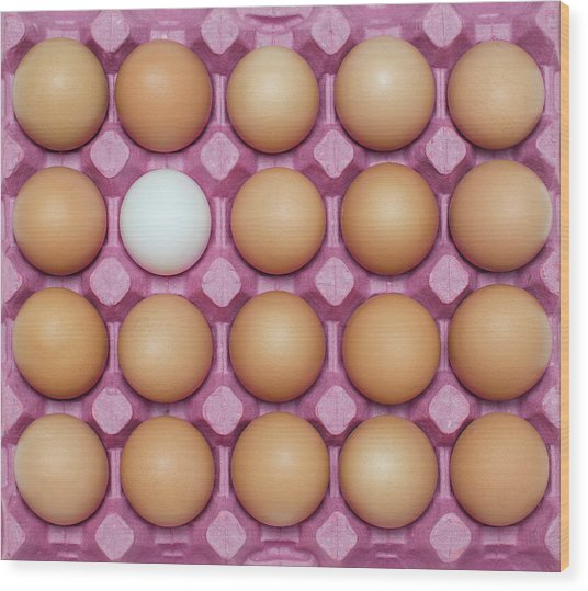 White Egg With Large Group Of Brown Wood Print by Ozgur Donmaz