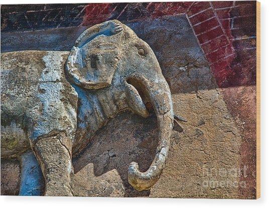 White Elephant Wood Print by Ken Williams