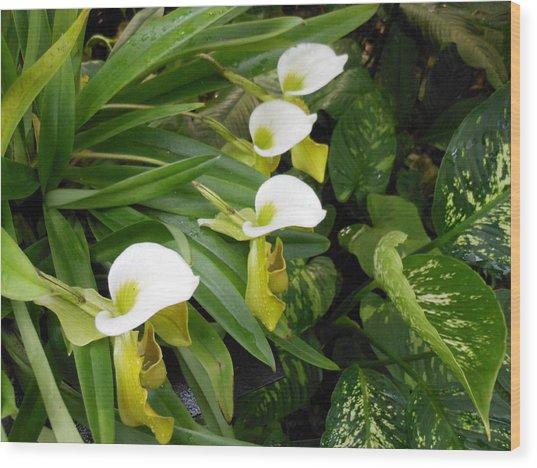 White Flower Array Wood Print