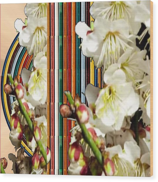 White Flower Medley Colorful Rainbow Stripes On The Backdrop Artist Navinjoshi  Wood Print