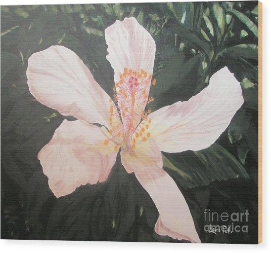 White Hibiscus In Acrylic Wood Print