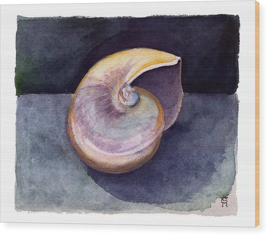 White Nautilus Wood Print