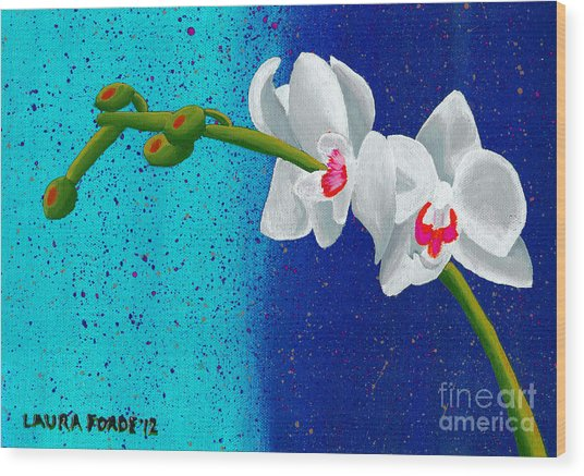 White Orchids On Blue Wood Print