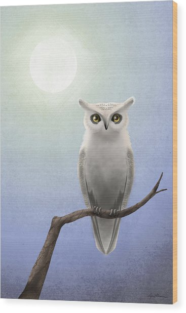 White Owl Wood Print