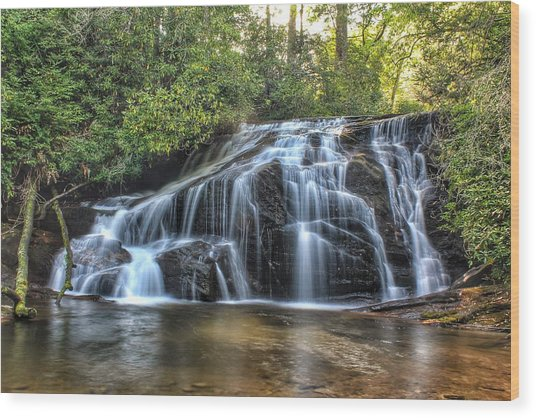 White Owl Falls Wood Print