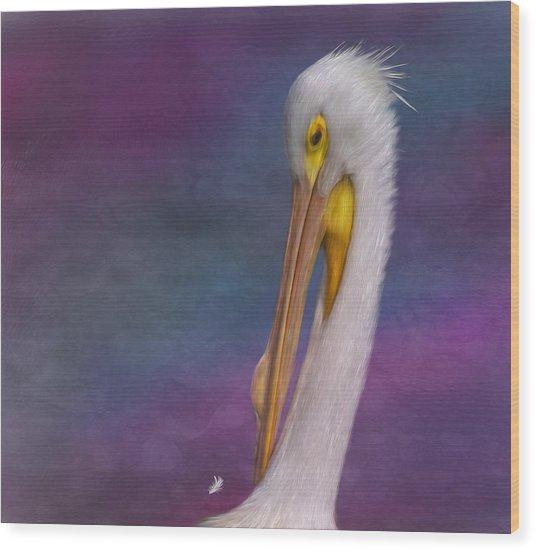 White Pelican Wood Print by Hazel Billingsley