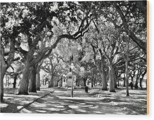 White Point Gardens At Battery Park Charleston Sc Black And White Wood Print