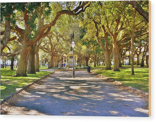 White Point Gardens At Battery Park Charleston Sc Hdr Wood Print