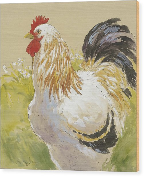 White Rooster Wood Print