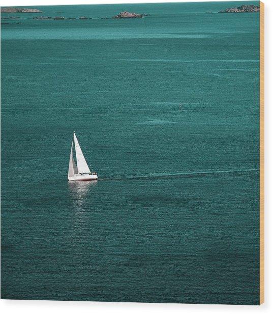White Sailboat Wood Print