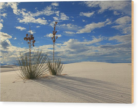 White Sands Afternoon 2 Wood Print