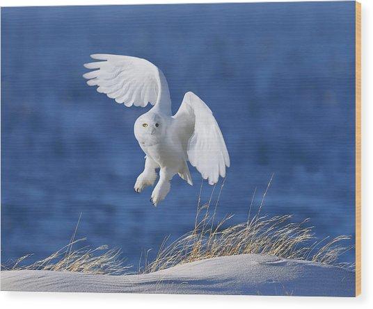White Spirit Demon Wood Print