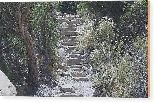 White Steps Wood Print