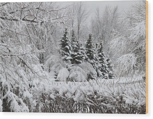 White Winter Day Wood Print