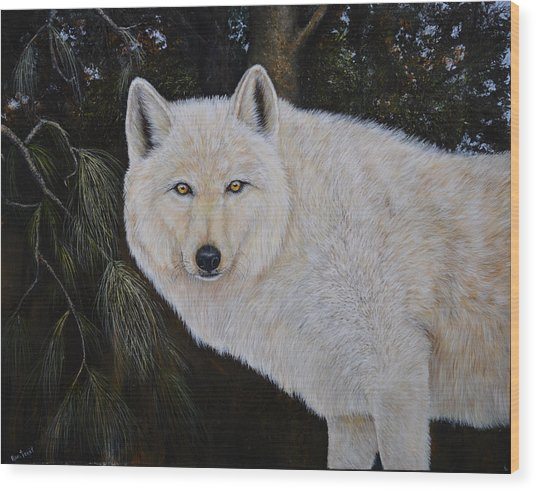 White Wolf In The Woods Wood Print