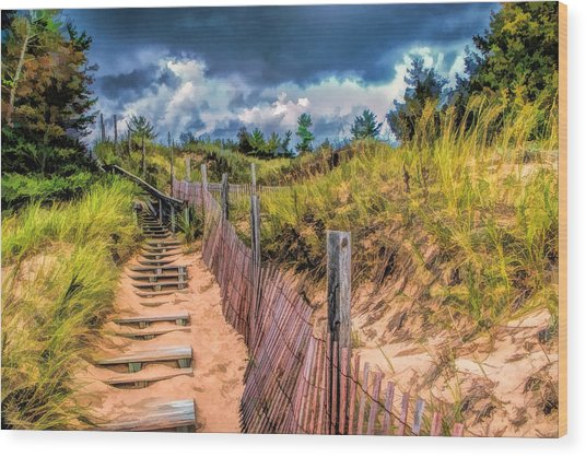 Whitefish Dunes State Park Stairs Wood Print