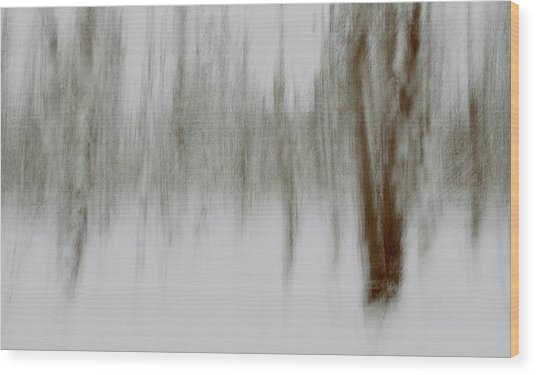 Whiteout Trees Wood Print