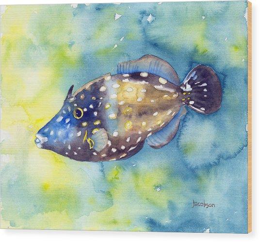 Whitespot Filefish Wood Print