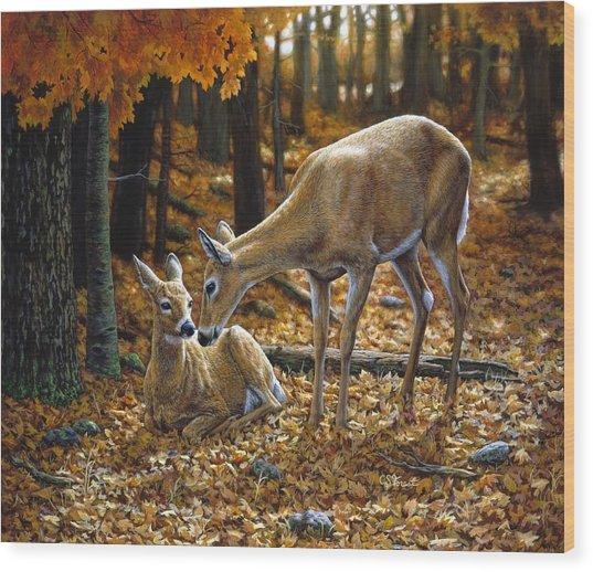 Whitetail Deer - Autumn Innocence 2 Wood Print