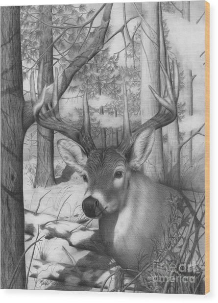 Whitetail Phantom Wood Print