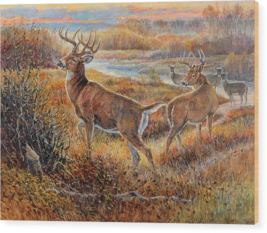 Whitetail Sunrise Wood Print