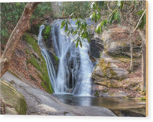 Widows Creek Falls Wood Print