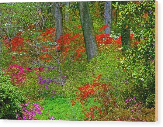 Wild Flower Garden Wood Print