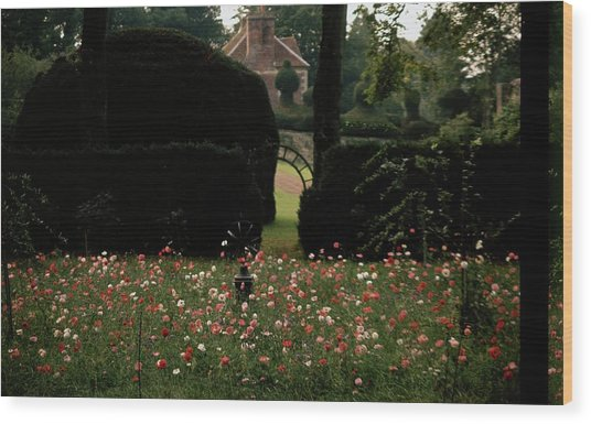 Wild Flowers At Reddish House Wood Print