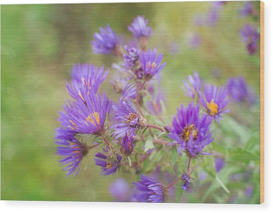 Wild Flowers In The Fall Wood Print