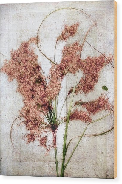 Wild Indian Rice In Autumn #2 Wood Print