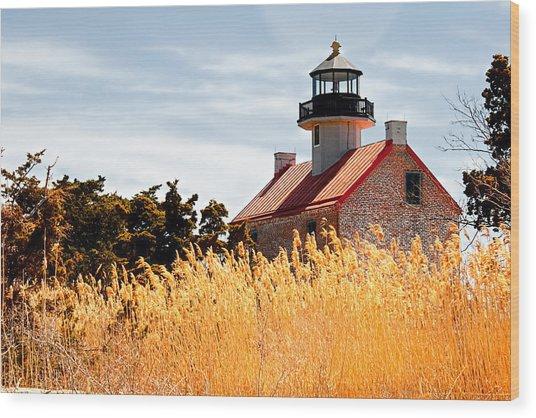 Wild Lighthouse Wood Print