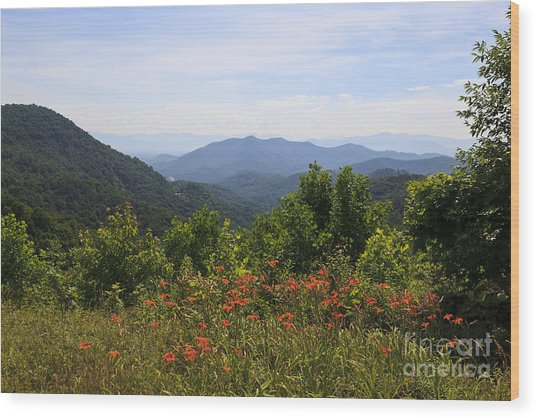 Wild Lilies With A Mountain View Wood Print