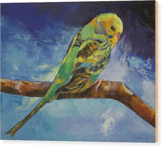 Wild Parakeet Wood Print