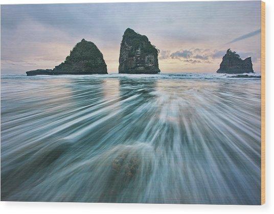 Wild West Coast Wood Print