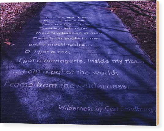 Wilderness - Carl Sandburg Wood Print