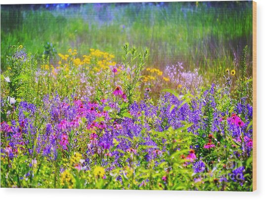 Wildflower Beauty  Wood Print
