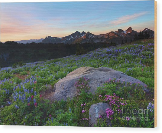Wildflower Dawning Wood Print