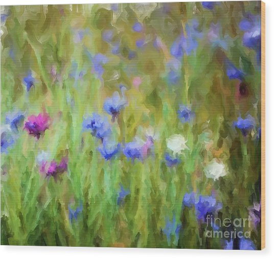Wildflower Fields Wood Print