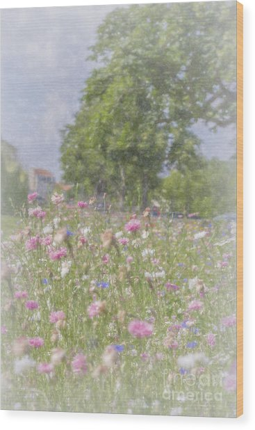 Wildflower Impressionism Wood Print