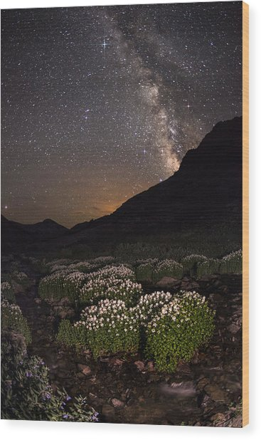 Wildflower Runoff Under The Stars Wood Print