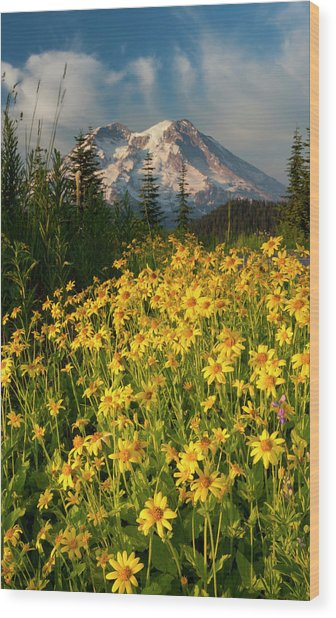 Wildflowers And Mt Wood Print