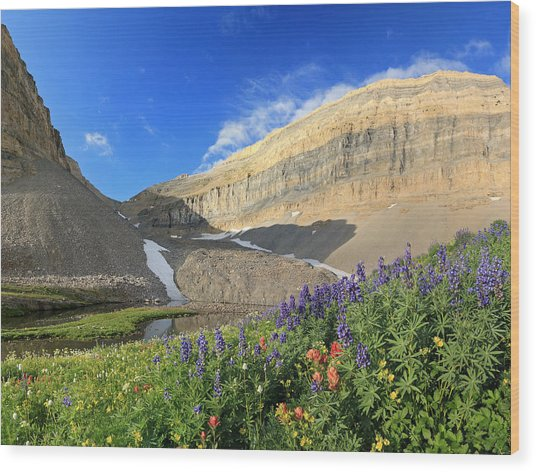 Wildflowers At Emerald Lake. Wood Print