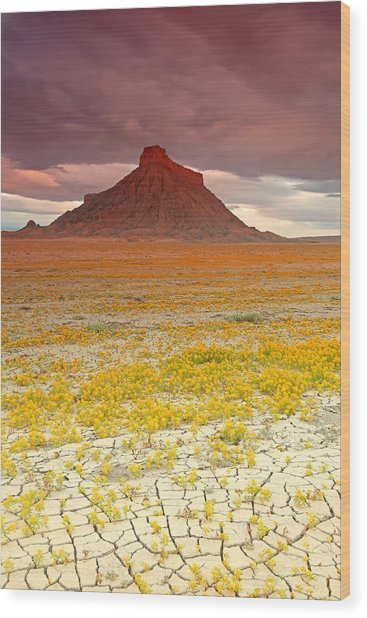 Wildflowers At Factory Butte. Wood Print