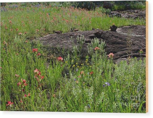 Wildflowers At Reveille Peak Ranch Wood Print by Cathy Alba