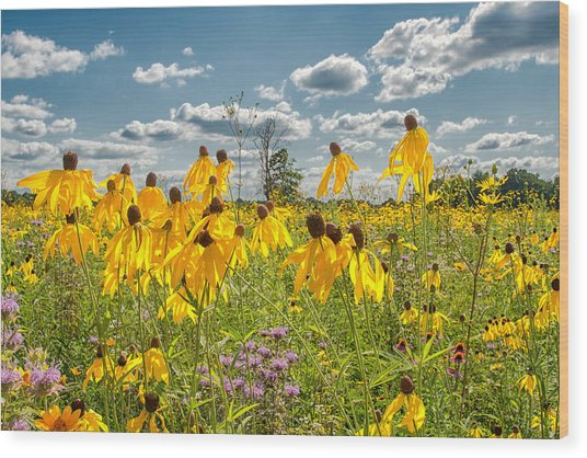 Wildflowers Dance Wood Print